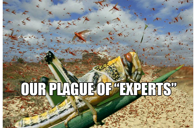 PlagueOfExperts650pw