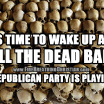 It's time to wake up and smell the dead babies: The Republican Party is playing us.