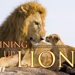 Education, worldview wars, and the lions who've come before us.