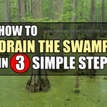 How To Drain The Swamp In Three Simple Steps
