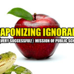 Weaponized Ignorance: The Great Success Of Public Schools