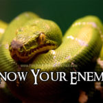 Know Your Enemy: Understanding the serpent, the fall, and the nature of rebellion against Jesus.